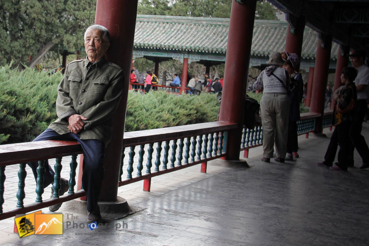Old man in the park outside the summer palace