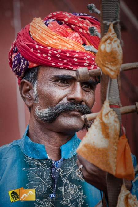 traditional indian musician