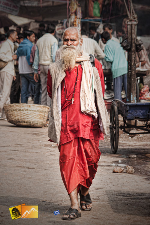 Old Indian man in Delhi