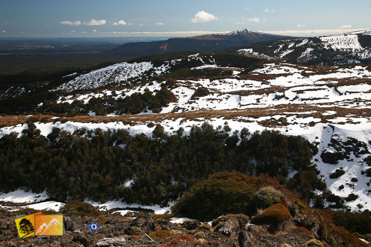 Melting snow on the mountain.