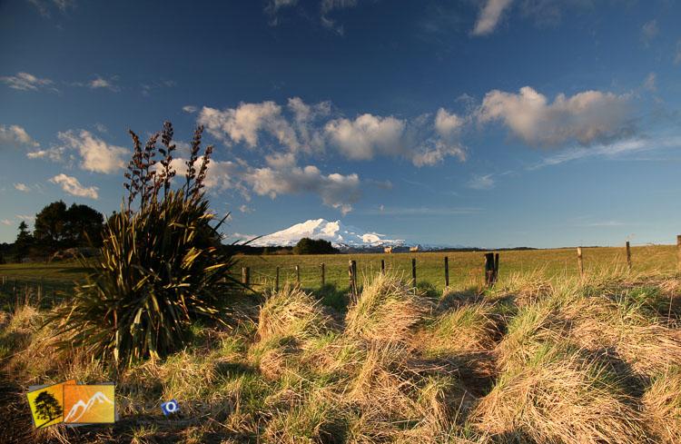 Distant shot of mount Ruapehu.