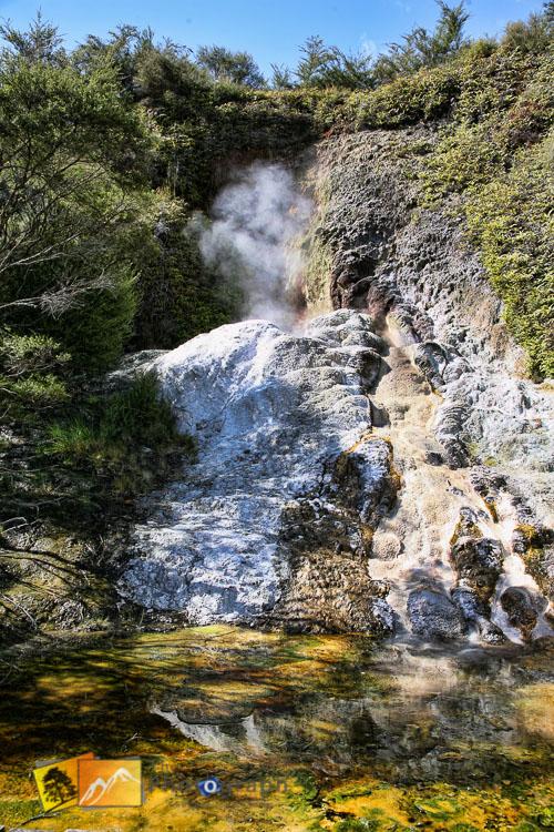Rotorua thermal park.