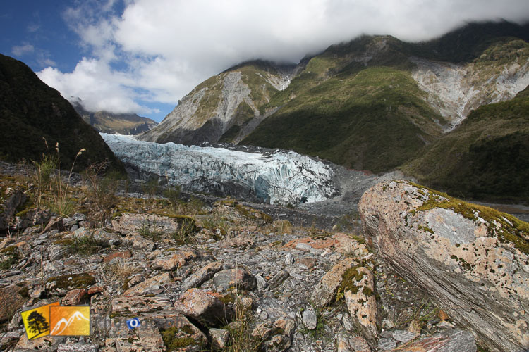 Trek to Fox Glacier.