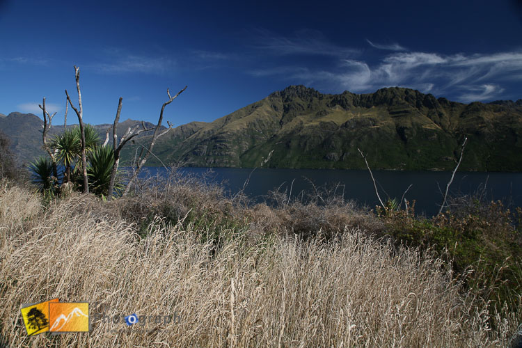 Queenstown lake Wakatipu.