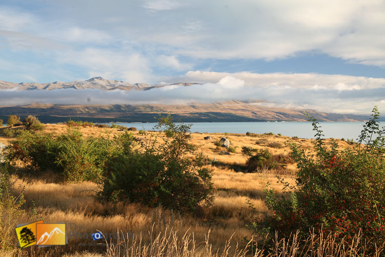 Autumn scene in front of lake Pukaki.