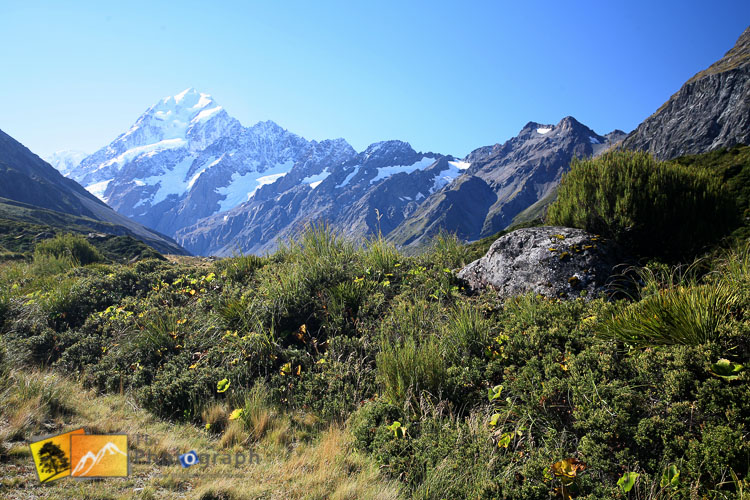 Mount Cook trek.