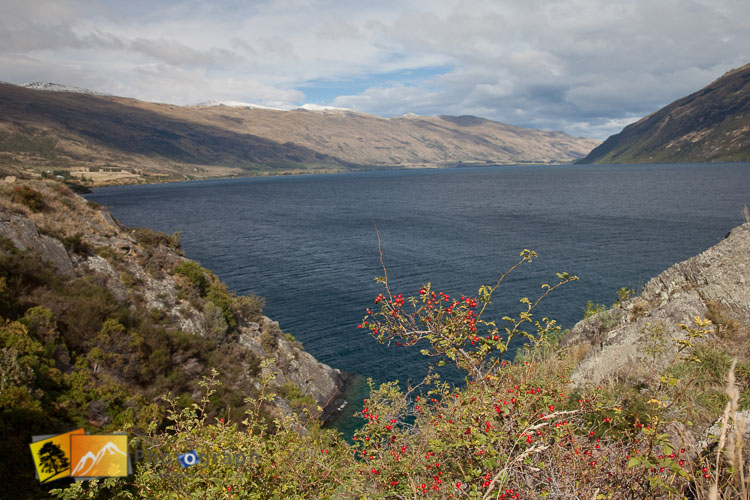 Lake Wakatipu from the road.
