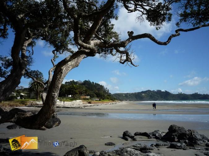 Waiheke beach.