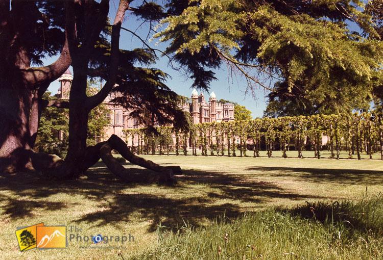 knebworth house gardens