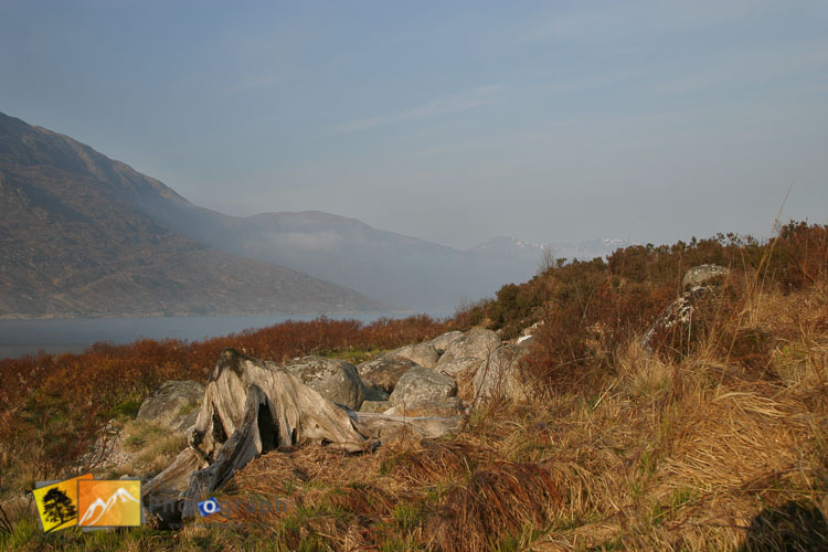 misty inverness scenery